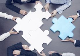 Associations, Groups & NGOs
